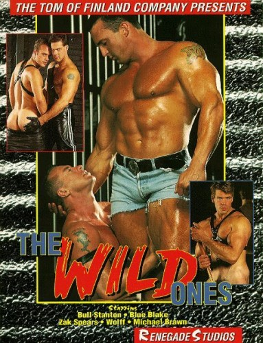 The Wild Ones (Dikie) (1994) cover
