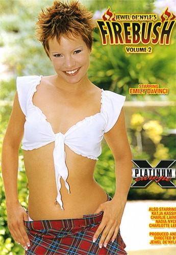Firebush volume 2 (2005) cover