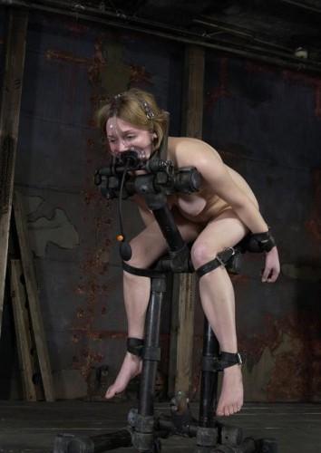 Hot BDSM rider