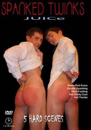 Spanked Twinks cover