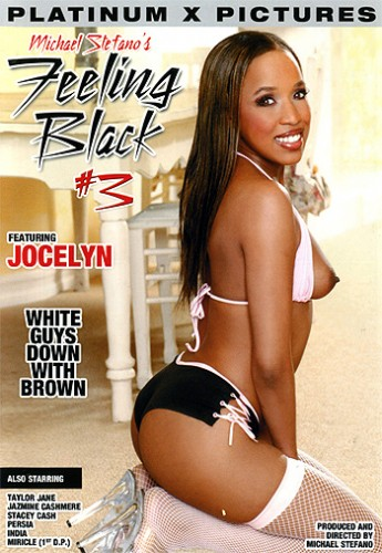 Feeling Black 3 (2004) cover