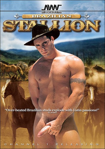 Brazilian Stallion cover