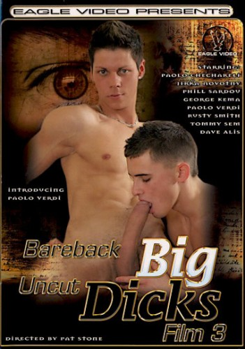 Bareback Big Uncut Dicks 3 cover