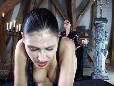 Play Instinct cover