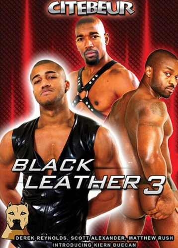 Black Leather 3 ( Part 1) cover