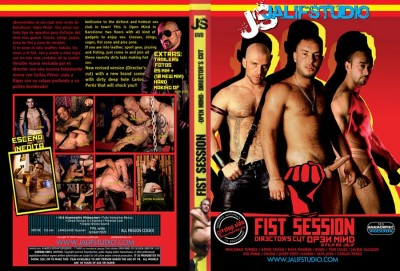 Fist Session: Open Mind Director's Cut cover