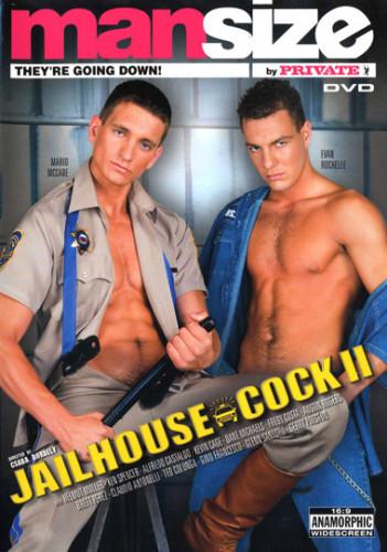 Jailhouse cock Vol.2