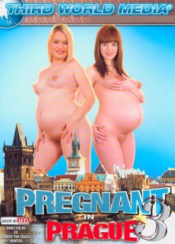 Pregnant In Prague 3 cover