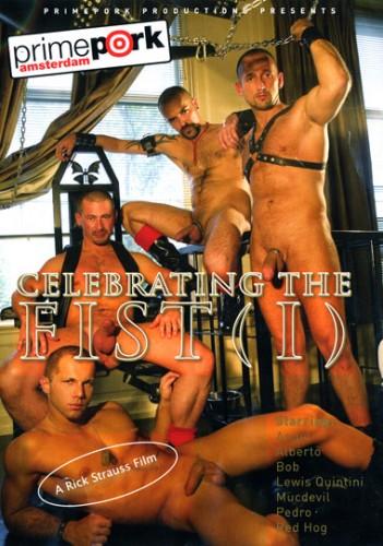 Celebrating The Fist I cover